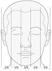 Schéma des cinq parties du visage égales de la largeur de la face - Dr Chardain