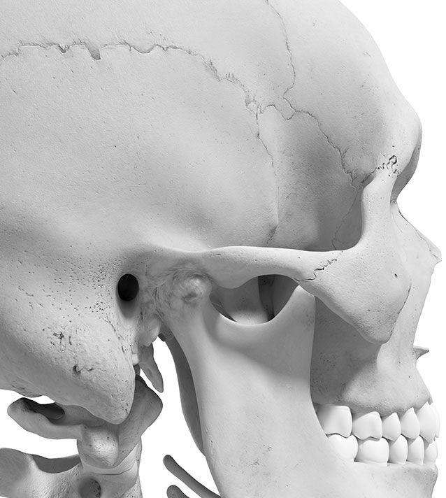 Articulation temporo-mandiculaire - Dr Chardain à Nogent-sur-Marne